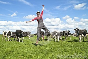 happy-dutch-farmer-his-cows-24533078